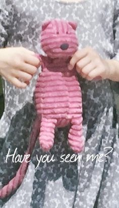 Lost on 15 Apr. 2016 @ Hollywood, Florida . Pinkie is a very well loved Jellycat brand pink cat- small size- about 8 inches high seated. She has a very long tail, horizontal striped material like corduroy, a black nose and small black eyes- ... Visit: https://whiteboomerang.com/lostteddy/msg/3ucg4j (Posted by Karen on 20 Apr. 2016)