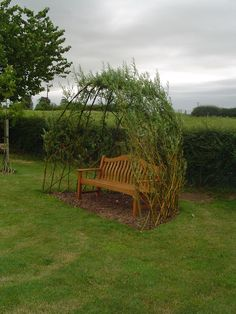 A living willow shelter round the seat. @Jo Smart I thought of you...