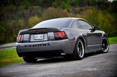 2003 Cobra best mustang I've ever owned!!