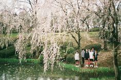 photoshoot before i need u bts Namjoon, Hoseok, Jhope, V Taehyung, Foto Bts, Bts Photo, Bts Hyyh, Bts Bangtan Boy, K Pop