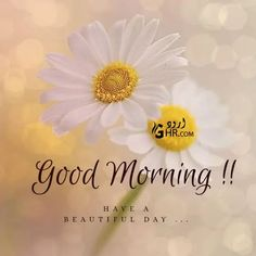 Cute Good Morning Texts, Good Morning Picture, Good Morning Messages, Good Morning Greetings, Morning Pictures, Good Morning Friday, Good Morning Good Night, Good Morning Wishes Friends, Dru Hill