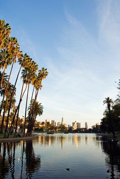 Los Angeles is having a moment right now. Not only is the home of Hollywood getting a brand new on-schedule Fashion Week this June, but its neighbourhoods in the east, like Silver Lake, Echo Park (pictured) and Los Feliz, have become a creative hub.