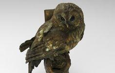 Des espèces animales sauvegardées pas l'impression 3D avec Threeding http://www.lifestyl3d.com/cui-cui-fait-le-moineau-croa-croa-fait-le-corbeau-bzz-bzz-fait-limprimante/