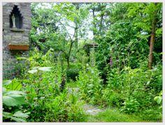 De tuin van Muggenbeet