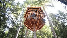 Going down… | This Awesome Invention Will Give You Tree House Elevator Envy