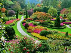 Butchart Gardens--British Columbia, Canada ~ There are five seasons in the gardens: winter, spring, summer, fall and wedding.  The flowers are changed out for each season.  Plus, there are roses, redwood trees, sculptures and more which are there year round. The most beautiful gardens I have ever seen!