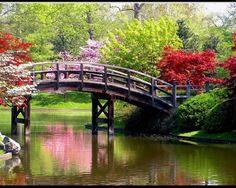 beautiful arched bridge
