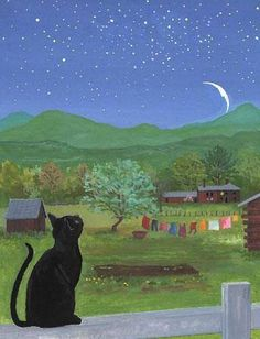 Cat looking at he twilight moon.