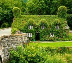 Tea Room Llanrwst Wales