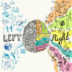 bosquejo de hemisferios cerebrales — Ilustración de stock #53324267