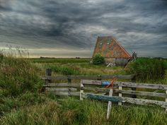 #TEXELPICS (images from the island Texel)