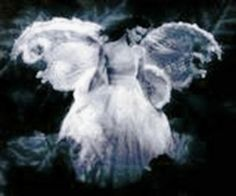 Angel Reach - Everything you`ve ever wanted to know about Angels .: Angel Sightings Should Not Be Dismissed