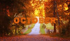 happy oktober | just wanted to tell everyone what an AMAZING job you all did with ...