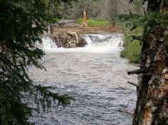 Burning Bear Trail Creek