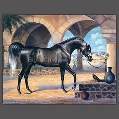 HORSE ART by Equestrianart Sharlene Lindskog-Osorio absolutely amazing & beautiful art!