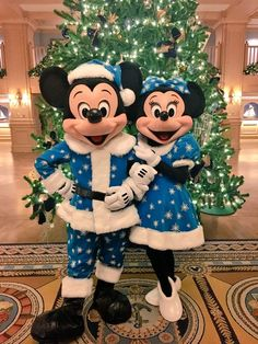 Mickey & Minnie decked out in their blue Holiday outfits Disneyland Christmas, Disney World Christmas, Mickey Mouse Christmas, Mickey Mouse And Friends, Disney Mickey Mouse, Disney Pixar, Walt Disney, Disney Characters Costumes, Disney World Characters