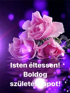 Happy Brithday, Name Day, Happy Birthday Greetings, Animals And Pets, House, Greeting Cards, Imagenes De Amor, Roses, Funny