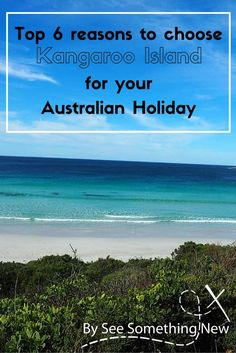 6 reasons to choose Kangaroo Island for an Australian Holiday Australia Tours, Visit Australia, Western Australia, Australia Travel, South Australia, Scuba Diving Australia, Australian Holidays, Beach Hacks, Kangaroo Island