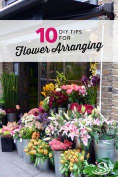 Gardening For Beginners 10 DIY Flower-Arranging Tips Floristry For Beginners, Gardening For Beginners, Flower Boxes, Diy Flowers, Flower Bouquets, Flower Ideas, Bridal Bouquets, Flower Crafts, Pizza Foto