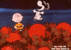 Snoopy & the great pumpkin - Google Search