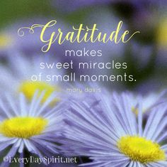 Gratitude makes sweet miracles of small moments. Gratitude Quotes, Attitude Of Gratitude, Express Gratitude, Positive Thoughts, Positive Quotes, Positive Vibes, Manifestation Meditation, Small Moments, Inspirational Quotes