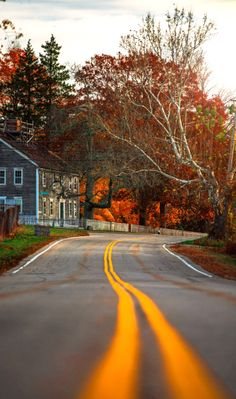 Straight roads do not make skillful drivers. Difficult roads often lead to beautiful destinations (at Mapleville, Rhode Island)