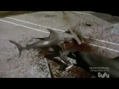Sharknado in two minutes
