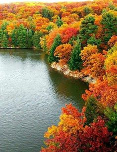 The Saturation in those beautiful fall colors make me miss Arkansas! In the fall the bluffs were full of scenery like this. Fall Pictures, Fall Photos, Pretty Pictures, Nature Photos, Autumn Scenery, Autumn Trees, Fall Leaves, Autumn Forest, All Nature