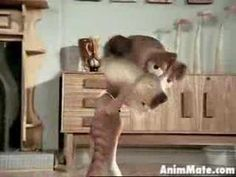 This is the infamous debut commercial featuring Maurice the Meerkat, stripping for a rather mortified lady in her living room. A must see. African, Ads, Cool Stuff, Happy, Youtube, Animals, Animales, Animaux, Animal