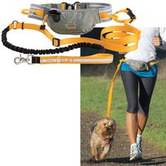 Hands Free Leash and Running Belt - Dog Beds, Dog Harnesses & Collars, Dog Clothes & Gifts for Dog Lovers | In The Company of Dogs