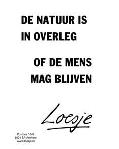 Favorite Quotes, Best Quotes, Funny Quotes, Words Quotes, Life Quotes, Sayings, Dutch Quotes, Word Up, Words Worth