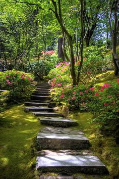Outdoors Discover Incredible Garden Pathway Ideas For Backyard And Front Yard 35 Garden Stairs Garden Bridge Beautiful Landscapes Beautiful Gardens Magical Gardens Unique Gardens Small Gardens The Secret Garden Secret Gardens Garden Stairs, Garden Bridge, Garden Paths, Garden Landscaping, Landscaping Ideas, Steep Hillside Landscaping, Moss Garden, Backyard Ideas, Arizona Landscaping