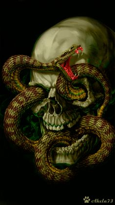 Discover & share this Morbid GIF with everyone you know. GIPHY is how you search, share, discover, and create GIFs. Ghost Rider Wallpaper, Snake Wallpaper, Skull Wallpaper, Dark Artwork, Skull Artwork, Snake Gif, Bull Skull Tattoos, Heavy Metal Art, Harley Davidson Art