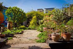 Summer garden at Hobbs 2013