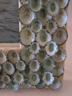 Beach Decor Blue Limpet Shell Frame Seashell by LiveCoastal