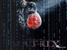 matrix_2 NASA AFIRMA: PODEMOS ESTAR VIVENDO DENTRO DE UM JOGO