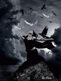 Moça e gaivotas
