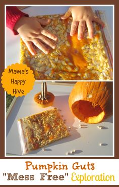 Pumpkin Sensory Play - www.mamashappyhive.com