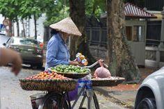 Vietnam - bike - fruit seller