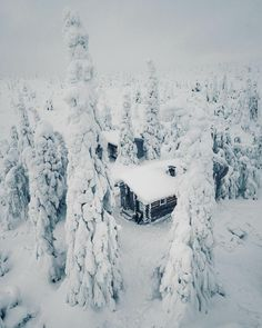 """61.2 k gilla-markeringar, 382 kommentarer - Konsta Punkka (@kpunkka) på Instagram: """"~ 🏡"""" Finland, Wilderness, Storytelling, Road Trip, Folk, Earth, Snow, Culture, Artist"""
