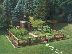 Considering starting your own backyard vegetable garden for fresh organic vegetables this article has backyard vegetable garden layout ideas for you.