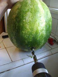 Drunken watermelon ON TAP!  This is friggin amazing!