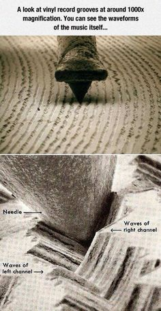 Vinyl record grooves at 1000x magnification.