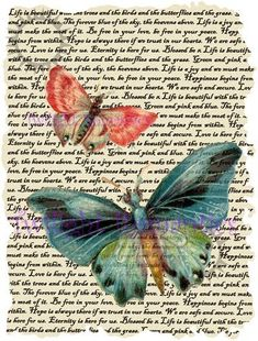 Pink and Blue Butterflies Vintage Art Print 12x8 FREE SHIPPING shabby chic