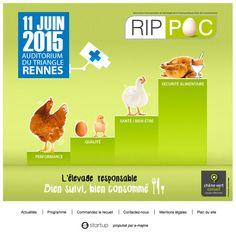 Nouvelle réalisation Startup pour les RIPPOC, Rencontres Internationales de Pathologie de la Poule Pondeuse Oeufs de Consommation. Site propulsé par E-majine. www.rippoc.eu