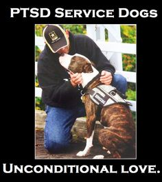 1000+ images about PTSD on Pinterest | Service dogs, Ptsd ...