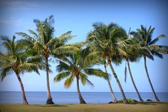 Hawaii - The Do's and Dont's of Traveling to Molokai