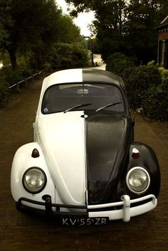 Volkswagen Beetle: Bug Photography Inspiration