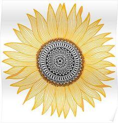 Golden Mandala Sunflower Posters