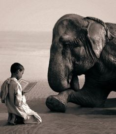 Gregory Colbert .... And we all lived happily ever after ....